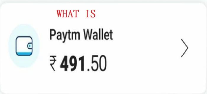 WHAT IS PAYTM WALLET